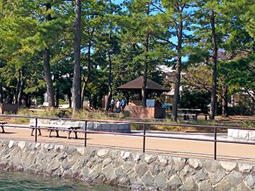 キャンプ 野島 場 公園